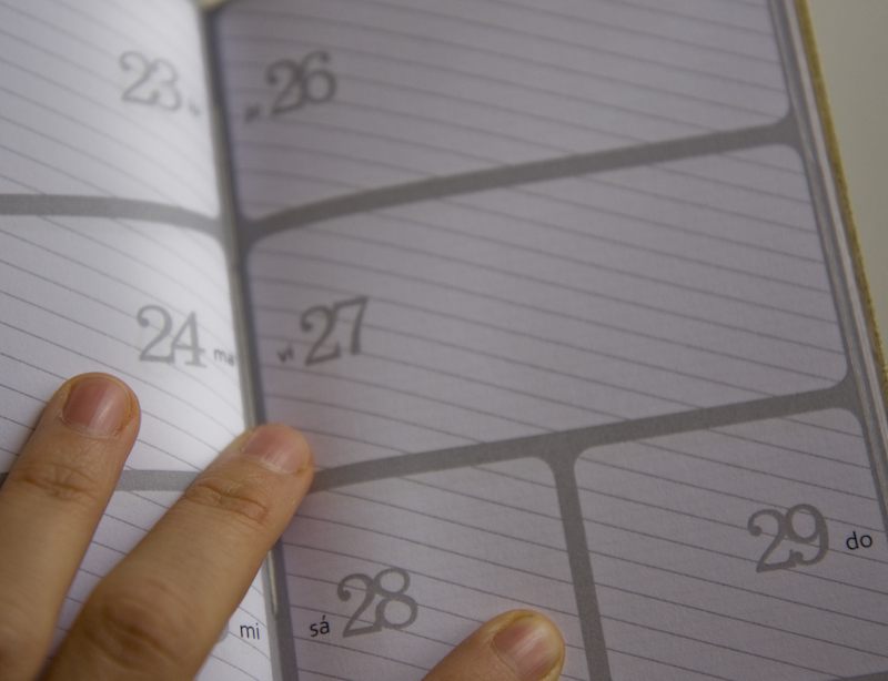 weekly planner, skewed