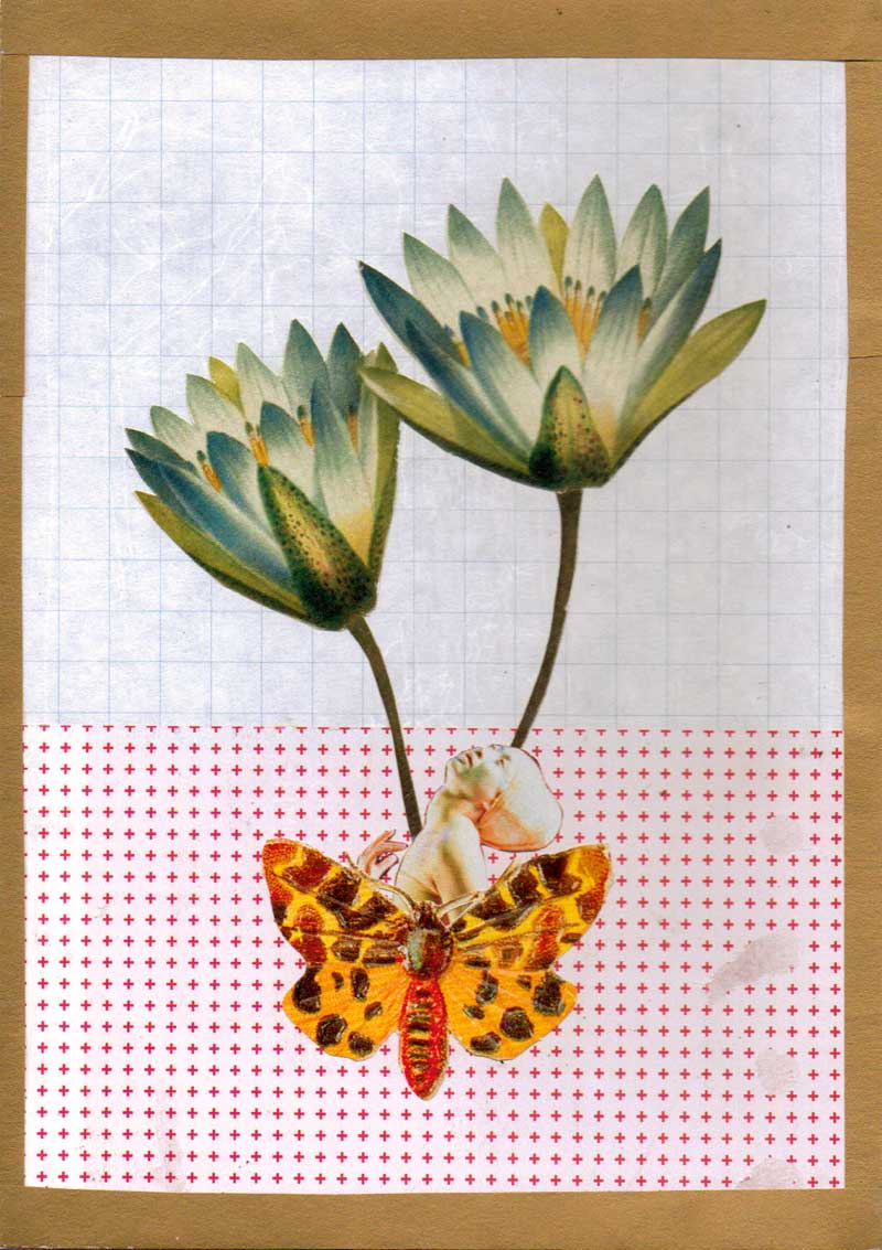 growth (collage)