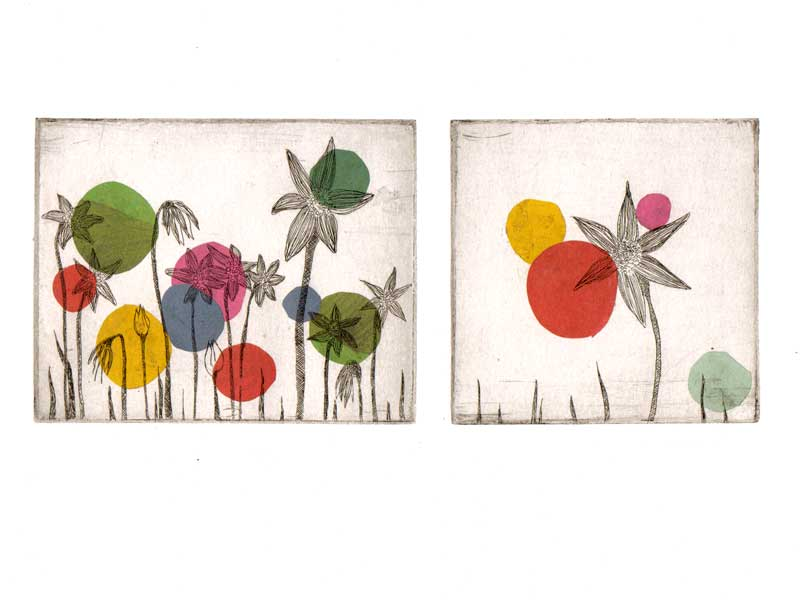 Blumen und Farben